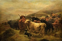 troupeau de vaches (highland) à rowardennan surplomblant le loch lomond by william r.c. watson