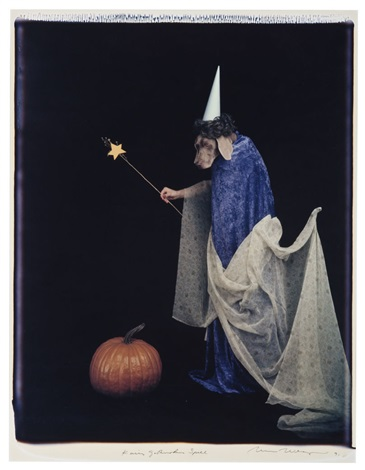 fairy godmother spell by william wegman