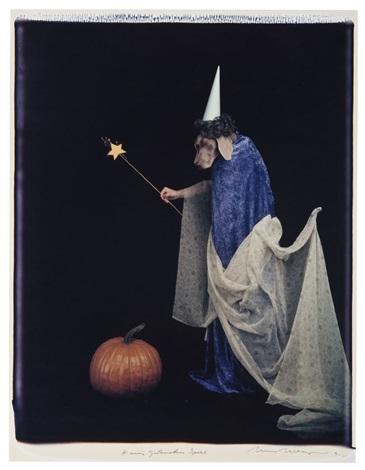 fairy godmother spell by william wegman