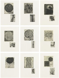 fourteen etchings (14 works) by terry winters