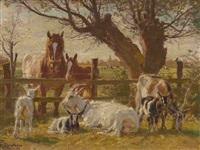 pferde und ziegen am weidezaun in niederrheinischer landschaft by julius paul junghanns