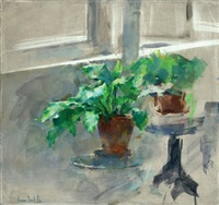 flower pot on the table by amnon david ar