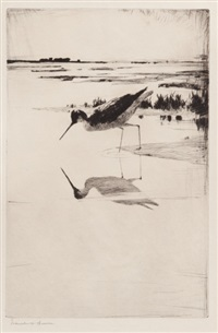 lone yellowlegs by frank weston benson