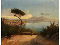 view of the bay of naples by e. altrui