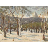 winter in the park by isabel mclaughlin