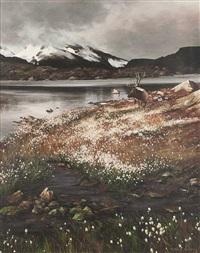 high sierra (elk) by morten e. solberg