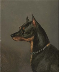 head of a terrier by edwin (of bath) loder