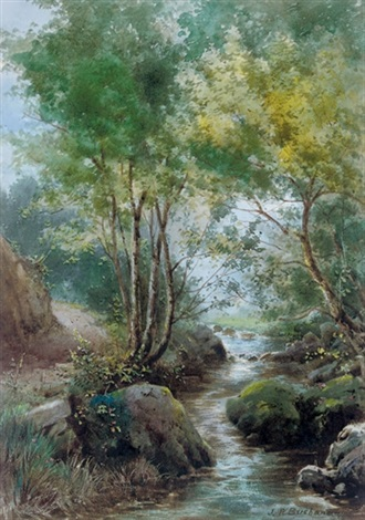 a woodland stream by jp buchanan