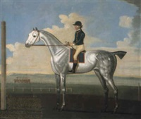 flyar, a grey stallion on a racecourse by daniel quigley