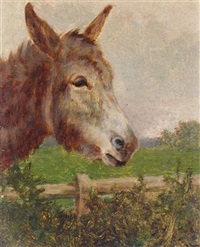 a new forest donkey by arthur batt