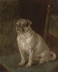 a well behaved pug seated on a chair by a. townsend
