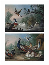 mallard, a swan and geese by a pond (+ peacocks and chickens beside a barn in a landscape; pair) by marmaduke cradock