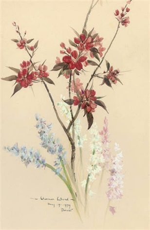 flower study by vernon ward