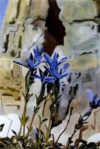 ohne titel (blauer enzian) by anne loch