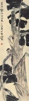 芭蕉小鸟 by yang shanshen