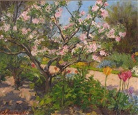 apple blossom in sunlight by henry somers kortright