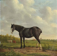 a black horse in a polder landscape by anthony oberman