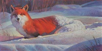 red fox in snow by nancy glazier