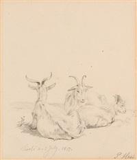 drei ruhende ziegen by peter heinrich lambert von hess