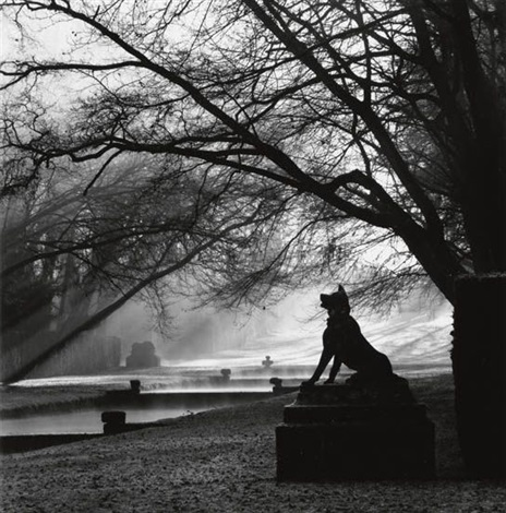 guardian wolf courances france by michael kenna