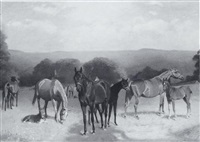 brood mares in pasture by arthur lewis townshend