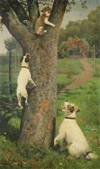 chat dans un arbre attaqué par deux chiens by caspar von reth