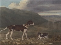 a gundog and a spaniel in a landscape by james loder of bath