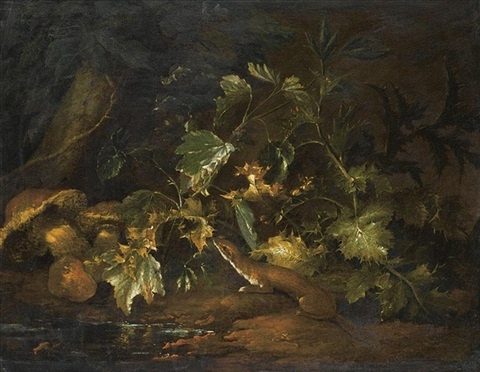 a forest floor with a stoat underneath some foliage beside a pool of water by niccolino van houbraken