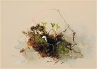 waldstück by willy kriegel