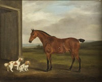 horse with king charles spaniels (study) by william henry davis
