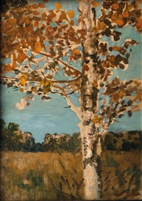 birch tree by hans am ende