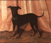 the black and tan terrier bijou by alice leotard
