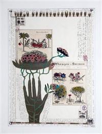pflanzen-formen by ruth tesmar