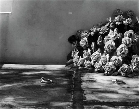 rings and roses cemetery ponce puerto rico by minor white