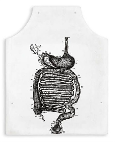 stomach anatomy fluxus apron by george maciunas