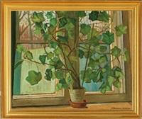 geranium in a window sill by anders gudmundsen-holmgreen