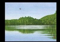 lake by shoko azuma