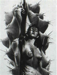 cactus nude by paul heisman