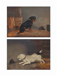 watching for the mouse and nearly got him! (pair) by edwin (of bath) loder