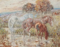 horses in a paddock by allerley glossop