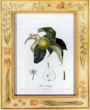 traité des arbres fruitiers nouvelle edition by henri louis duhamel du monceau