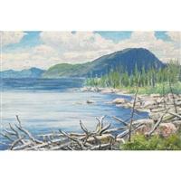 driftwood by gordon edward pfeiffer
