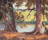 lake through the trees by erna nook jackson