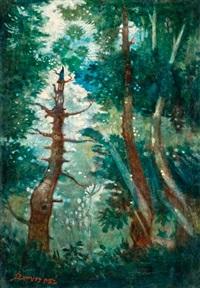 fények az erdőben by jenõ remsey