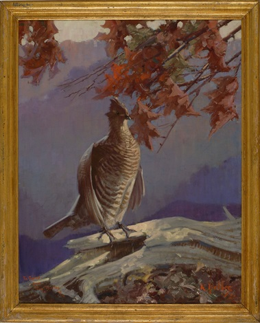portrait of a ruffed grouse by reginald f bolles