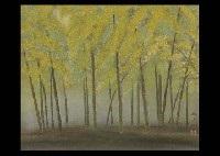 bamboo woods by kyujin yamamoto