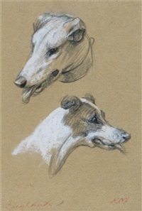 greyhounds (study) by raoul millais
