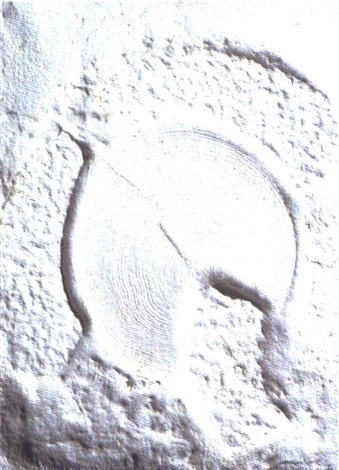 impronta by giancarlo sangregorio
