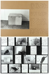 control situation: locked box enclosing a cat - control box (diptych) by vito acconci
