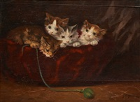 le panier aux chatons by jules leroy